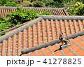 沖縄 竹富島の赤レンガの屋根とシーサー 41278825