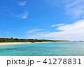 晴れ 海 海岸の写真 41278831