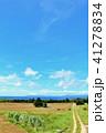 晴れ 海 波照間島の写真 41278834