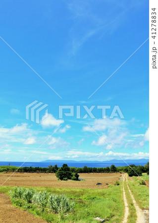 沖縄 青空の波照間島 41278834