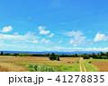 晴れ 海 波照間島の写真 41278835