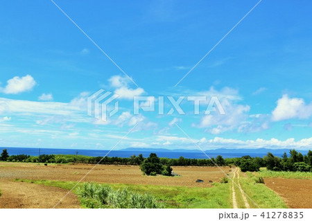 沖縄 青空の波照間島 41278835