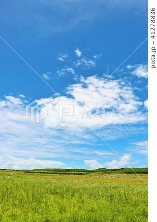 青空の沖縄 波照間島の大地 41278836