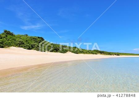 沖縄 青空と青い海 41278848
