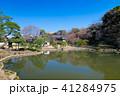 肥後細川庭園 庭園 公園の写真 41284975