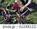 花 庭 植物の写真 41288122