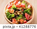 生野菜サラダ 41288776
