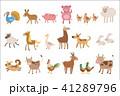 鶏 ひつじ ヒツジのイラスト 41289796
