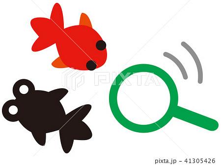 金魚すくいのイラスト素材 [41305426] - PIXTA