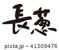 長葱 筆文字 野菜のイラスト 41309476