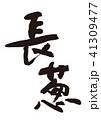 長葱 筆文字 野菜のイラスト 41309477