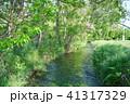 安曇野 湧水川 新緑の写真 41317329