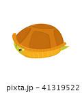 かめ カメ 亀のイラスト 41319522