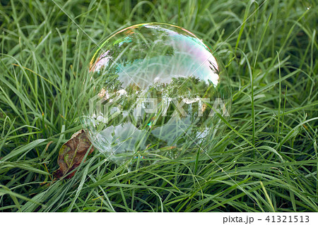 Big soap bubble lying in the grass 41321513
