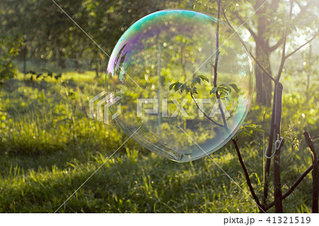 Big soap bubble flying in the air 41321519