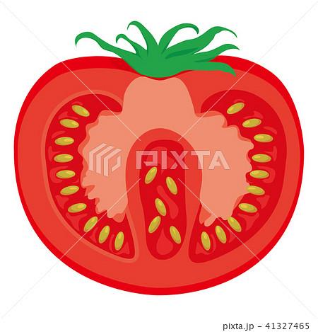 カットした断面のトマトのイラスト|食べ物のイラスト|TOMATO 41327465