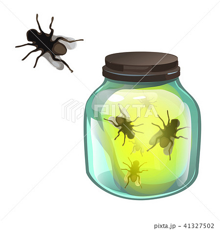 Glass transparent jar with flies inside isolated on white background. Vector cartoon close-up 41327502