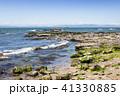 野間 海岸 海の写真 41330885