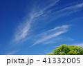 空と緑(背景素材) 41332005