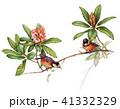 花鳥 41332329