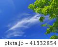 空と緑(背景素材) 41332854