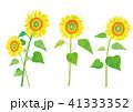ひまわり 夏 花のイラスト 41333352