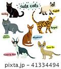 ねこ ネコ 猫のイラスト 41334494