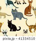 ねこ ネコ 猫のイラスト 41334510
