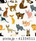 ねこ ネコ 猫のイラスト 41334511