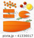 サケ サーモン 鮭のイラスト 41336017