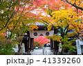 禅林寺 中門 京都の写真 41339260