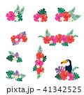 花 ハイビスカス トロピカルのイラスト 41342525
