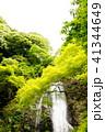 箕面の滝 41344649