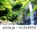 箕面の滝 41344650