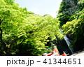 箕面の滝 41344651