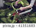 ガーデニング 園芸 お花の写真 41351683