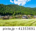 蕎麦の花と美山かやぶきの里 41353691