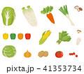 野菜いろいろ 41353734