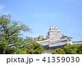 姫路城 城 天守閣の写真 41359030