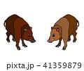 イノシシのイラスト 41359879