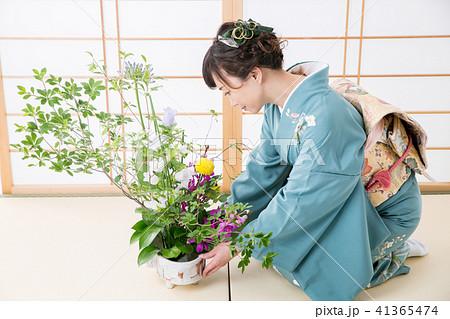 生け花をする着物姿の女性 41365474