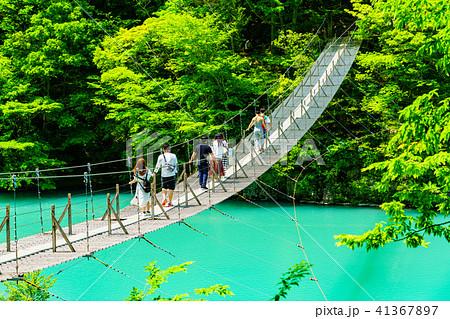 【静岡県】新緑の寸又峡 夢の吊り橋 41367897
