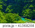 【静岡県】新緑の寸又峡 夢の吊り橋 41368208