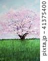 1本桜 手書き スケッチ 41375400