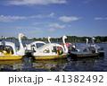 千波湖 湖 湖畔の写真 41382492