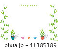 スナップエンドウ 植物 栽培のイラスト 41385389