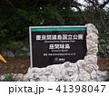 慶良間諸島 41398047