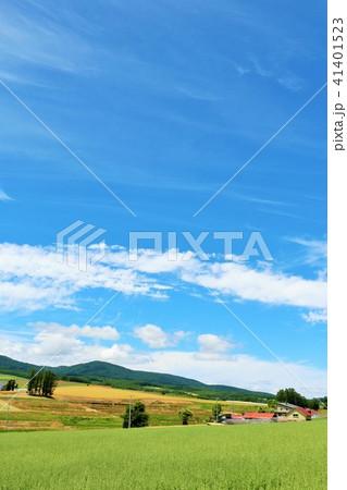 北海道 爽やかな青空と高原 41401523