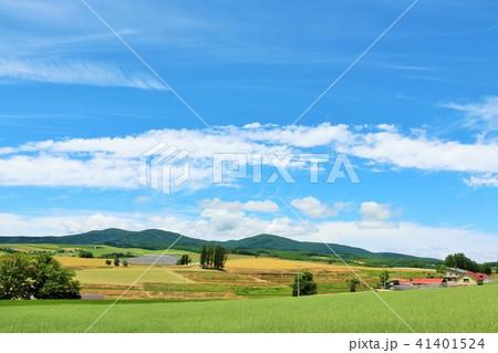 北海道 爽やかな青空と高原 41401524
