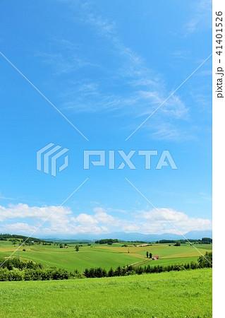 北海道 青空と大地 41401526